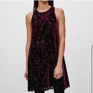 Wilfred Silk Velvet Trompette Dress sz XS